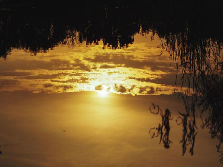 The Sun Is Shining Water Sun Sunset Water Reflections Landscape Beautiful Mood Taking Photos What I Value Enjoying The Sun