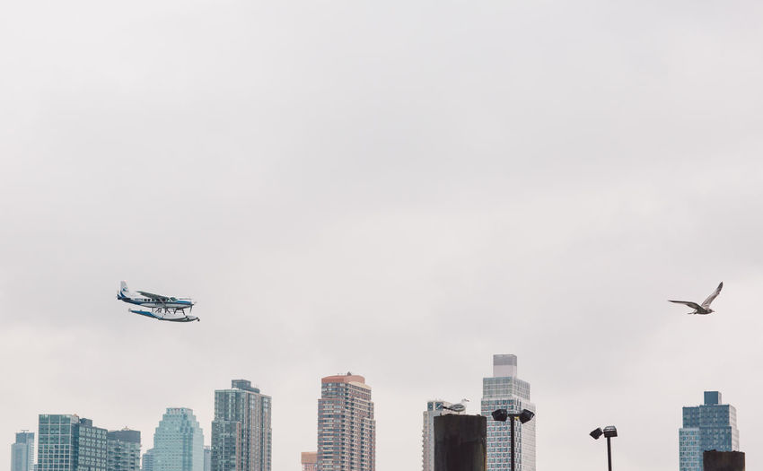 Low angle view of airplane flying in city against sky