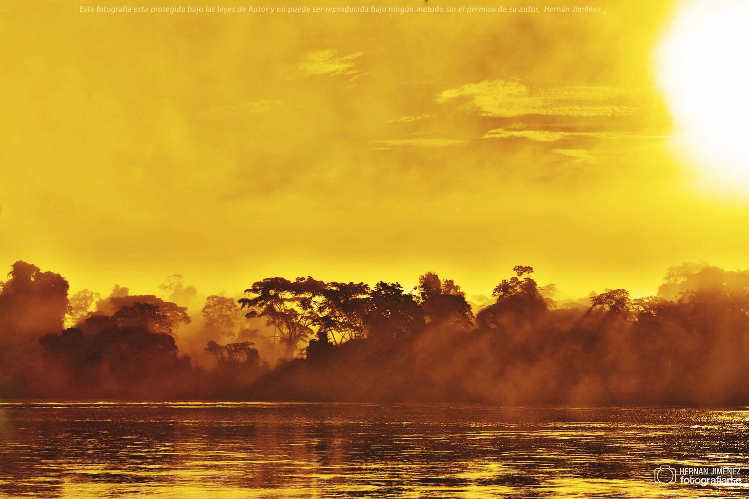 sunset, water, sun, scenics, beauty in nature, tranquil scene, tranquility, sunbeam, sky, nature, sunlight, tree, idyllic, orange color, lens flare, cloud - sky, outdoors, no people, back lit, non-urban scene, growth, cloud, remote, majestic, landscape