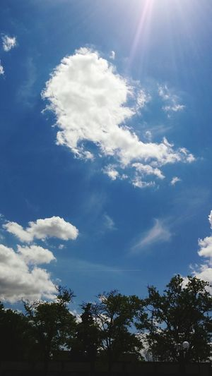 Tree Cloud - Sky Sky Blue Low Angle View Day No People Nature Outdoors Beauty In Nature Odd Cloud Formation Cloud_collection  Cloudscape Dramatic Sky Cloud Porn😍 Blue Skies ⛅ Blue Sky White Clouds Beauty In Nature Backgrounds
