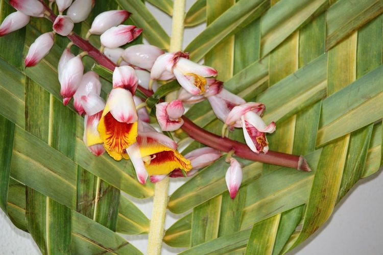 Close-up of flowers on woven palm leaf