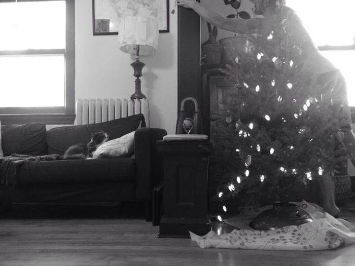 Cat Black & White Christmas Tree