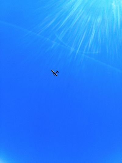 Airplane Flying Clear Sky Blue Journey Sky Travel