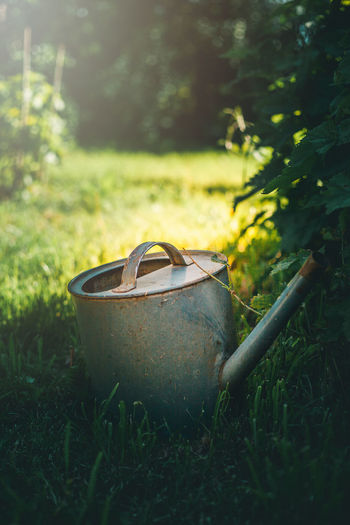 Close-up of watering can on grass