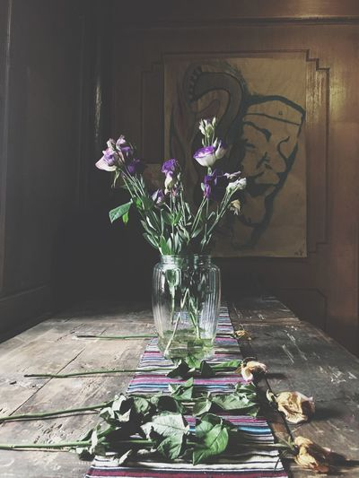 Still Life Plant Flower Flowering Plant No People Nature Wall - Building Feature Decoration Indoors  Vase Shadow Day Purple The Still Life Photographer - 2018 EyeEm Awards