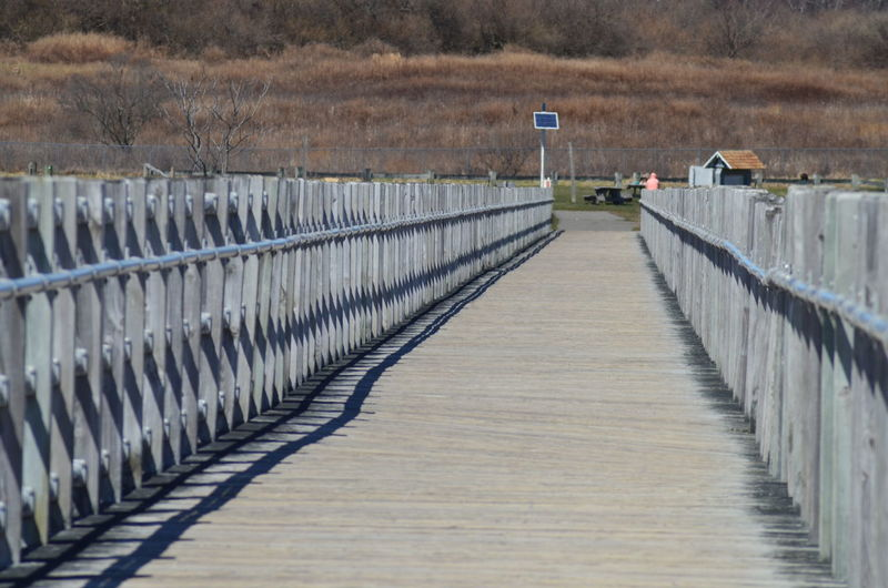 Beauty In Nature Boardwalk Day No People Outdoors Railing The Way Forward Water