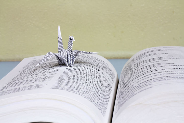 Close-up of paper swan on open book