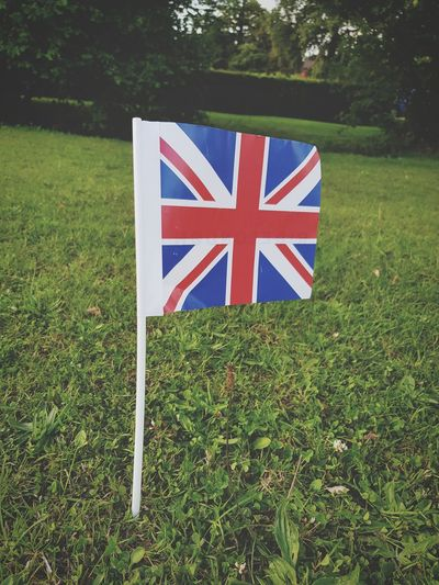 Flag Grass Patriotism Green Color Day No People Outdoors Red Nature Tree Close-up Union Flag Bunting The Week On EyeEm