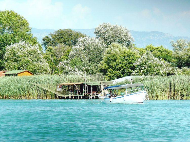 Peche sur la rivière Bojana Montenegro Nature Photography Peach River