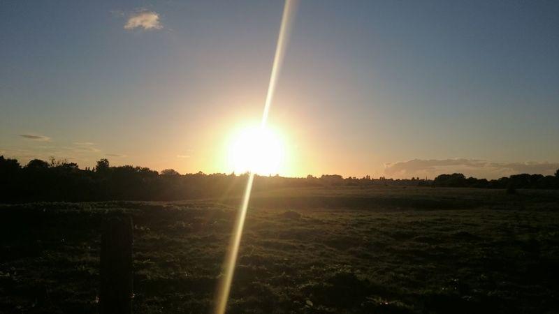 Lens Flare Sunrise Field