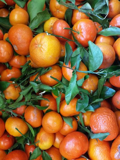 Farbenfroh Q Grün Orange Color Orange Green Mandarin Oranges Mandarinen Obst & Gemüse Obst Fruits Food Foodphotography Food Market The Essence Of Summer Visual Feast