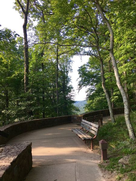 Beautiful look out Point Mammoth Cave National Park Mammoth Cave Cave City, Ky Mammoth Cave,Ky Trees Bench Look Out Scenic Peaceful