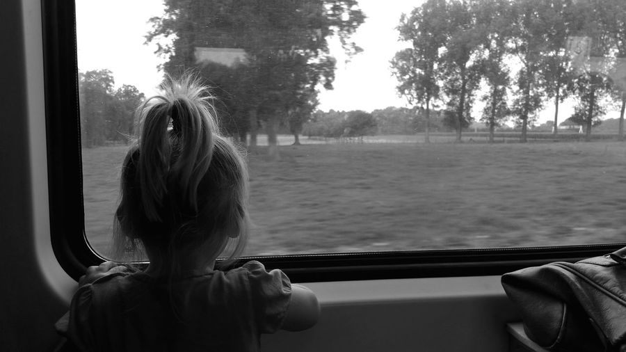 Rear view of girl with ponytail looking at trees through train window