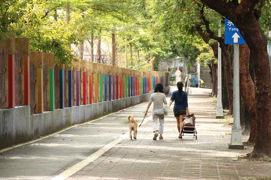 Adult City Day Dog EyeEm EyeEm Best Shots Full Length Horizontal Men Multi Colored Noon One Person One Woman Only Only Women Outdoors People Person Rainbow Rainbow Colors Real People Taipei Tawian Togetherness Tree Walking