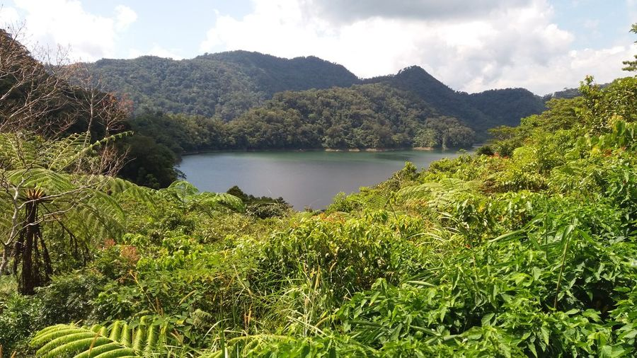 Twin Lake, Balinsasayaw Negros Oriental Philippines Water Nature Lake Landscape Tree Reflection Grass Growth Sky Green Color Mountain Scenics Outdoors Beauty In Nature Day Lush - Description No People
