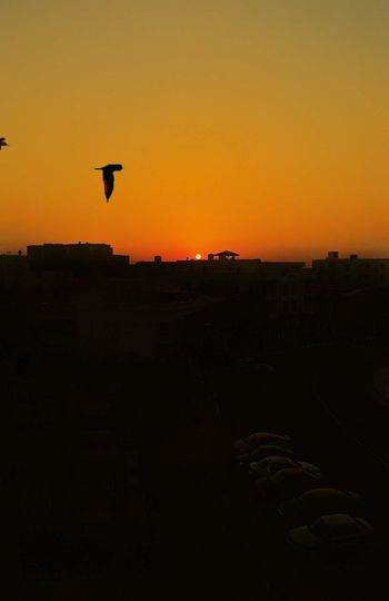 Sunset Silhouette Hot Air Balloon Flying Sky Travel Destinations Outdoors No People Built Structure City Cityscape Scenics Nature Architecture Beauty In Nature Day