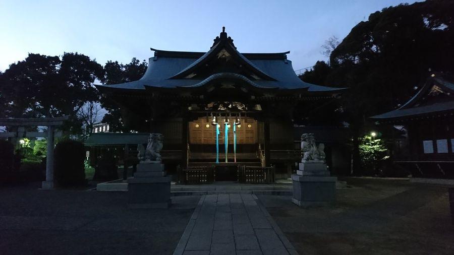 Tokyo landscape HACHIMAN shrine in Akabane. 日本 City Japan Photos Japan Tokyo Japan Shrine Of Japan Lifestyles No People Outdoors Night