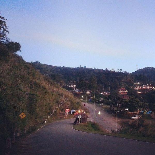 หนาวๆ Phucheefah Chiangrai