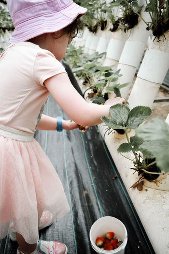 Midsection of girl holding flower in potted plant