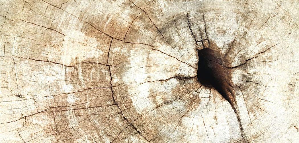 Wood flooring,