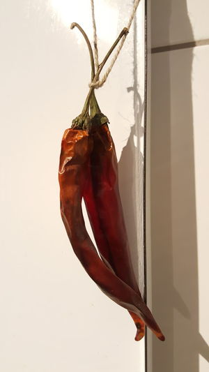 Chili Peppers Chili  Chillis Hanging No People Close-up Indoors  Day Light And Shadow Red Red Color Art Photo Art Photgraphy Abstract Art Card Design Decorative Around Me Detail Art Photography Indoors  Focus On Foreground Food And Plants Freshness Plant Art