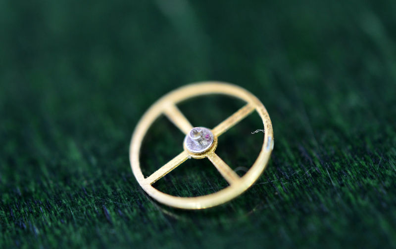 High angle view of ring on grass