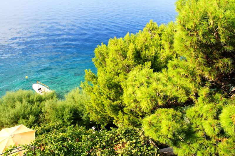 Sea Water Nature Outdoors Day Beauty In Nature Plant No People Growth Tree Sky Paradise Croatia