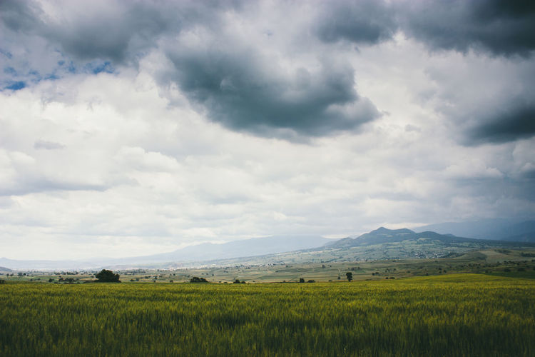 Agriculture Beauty In Nature Cloud - Sky Clouds Day Field Freshness Grass Growth Landscape Lonely Mexico Mountain Nature No People Outdoors Rain Rural Scene Scenics Sky Tranquil Scene Travel Finding New Frontiers