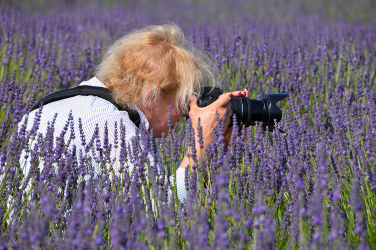 France Provance Provence Agriculture Beauty In Nature Field Flower Flowering Plant Flowers Growth Land Lavanda Lavander Lavander Flowers Lavender Lavender Colored Nature One Person Outdoors Photographer Plant Purple Technology