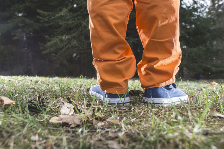 Boy Forest Play Playing Meadow Three Fir Tree Pine Pine Tree Grass Low Section Human Leg Plant Standing Human Body Part One Person Body Part Nature Land Shoe Day Field Real People Men Lifestyles Outdoors Selective Focus Leisure Activity Human Foot Jeans Human Limb