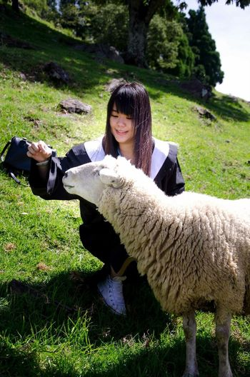 不被情緒帶走 啦啦啦 羊羊要一直乖乖的