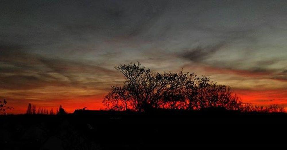 Sonnenuntergang in Uerdingen... 😍 Uerdingen Sonnenuntergang Derhimmelbrennt Sunset Krefeld Sundown