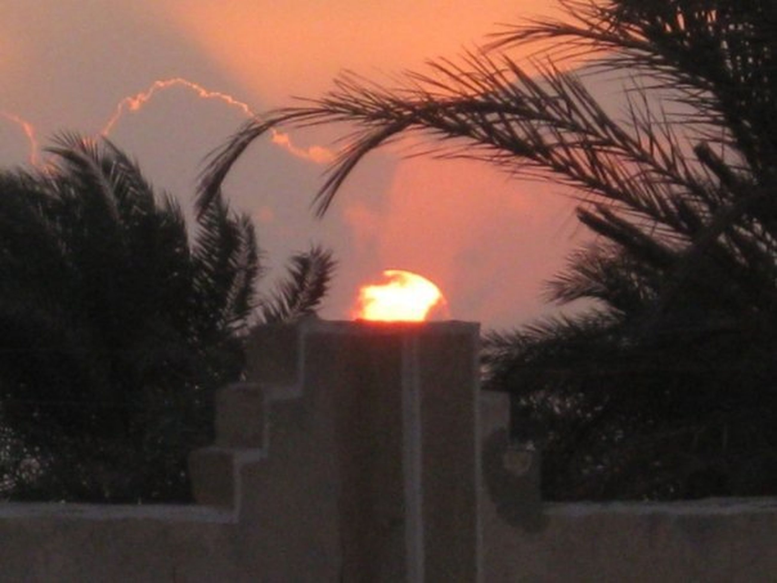 plant, tree, nature, no people, illuminated, sunset, palm tree, burning, sky, dusk, fire, candle, architecture, flame, tropical climate, outdoors, heat - temperature, night, building exterior, tranquility, palm leaf
