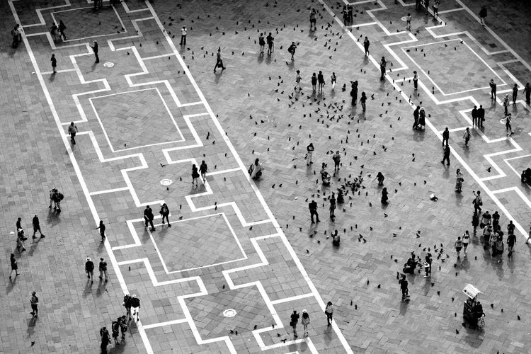 Geometric Shapes Square Venice, Italy Architecture Black And White Blackandwhite Geometric High Angle View Large Group Of People Outdoors People Pidgeons Real People Travel Destinations Vacations Venice Walking An Eye For Travel The Traveler - 2018 EyeEm Awards