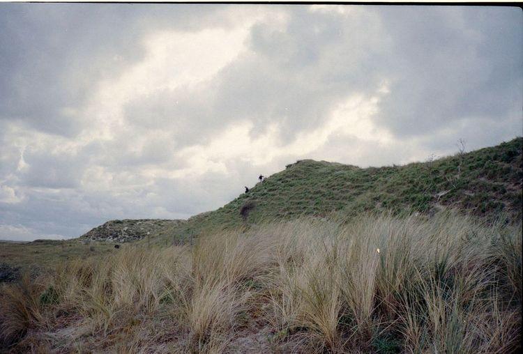 Coastline Coast Contax Kodak Portra Kodak 35 Mm 35mm Film Analog Analogue Photography Tranquility Tranquil Scene EyeEmNewHere