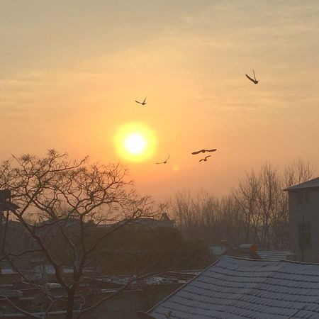迎着清晨的太阳……