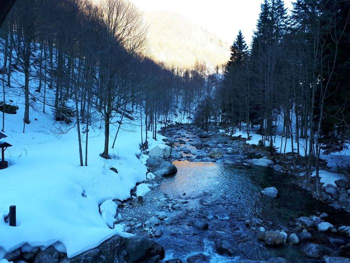 mountain stream Val Pesio, Cuneo, Italy Snow And Water Snow Winter Cold Temperature Nature Weather Outdoors Day Beauty In Nature Water
