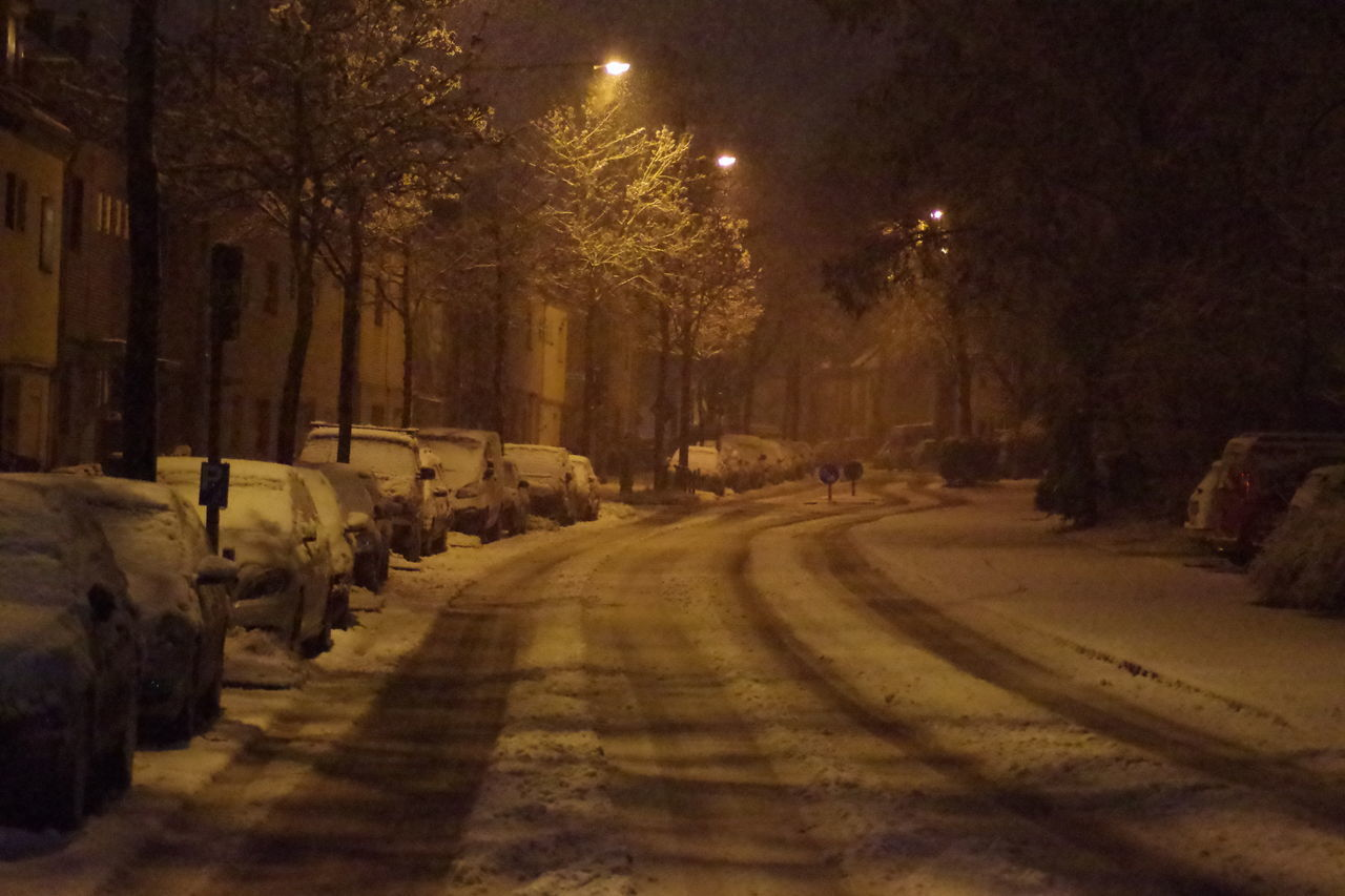 STREET AMIDST TREES IN CITY DURING WINTER