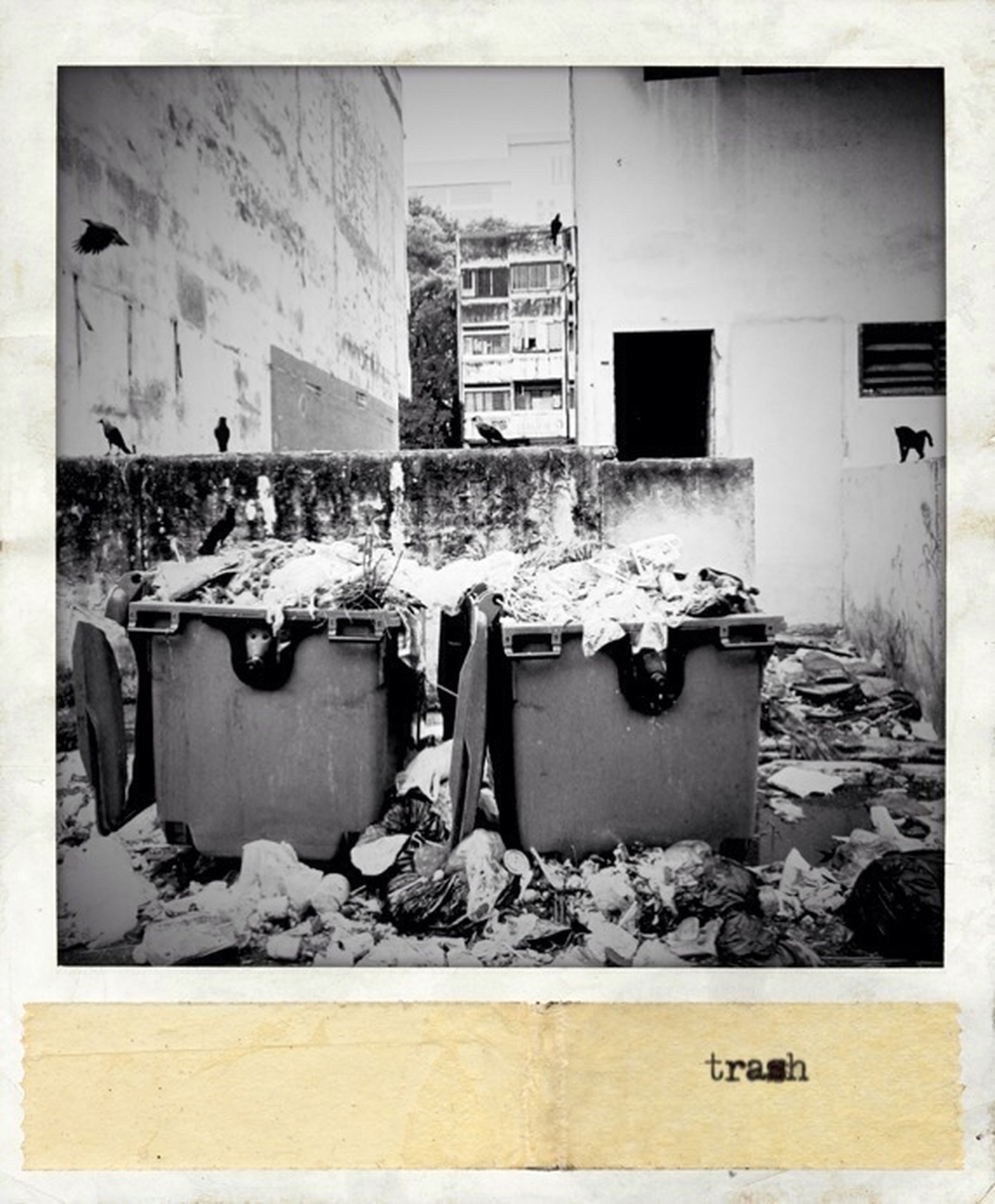 transfer print, building exterior, architecture, built structure, auto post production filter, abandoned, damaged, obsolete, house, run-down, deterioration, transportation, window, day, mode of transport, garbage, old, bad condition, cold temperature, outdoors