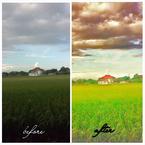 Before And After Eyeem Philippines EyeEm Best Edits Nature's Greatest Miracle