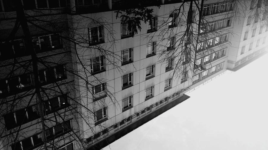 Automne🍁🍂🍃 Noir Et Blanc A L'envers Relaxing Time Taking Photos Happy :) Noel2015 Walking Around Paris ❤ Paris 14eme La Vie Et Belle ❤ Hello World Enjoying Life