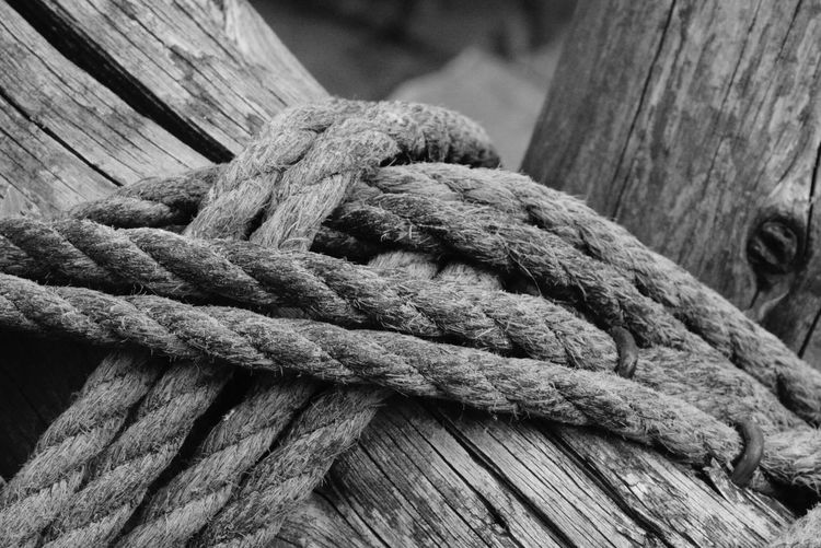 Close-up of ropes tied to wood