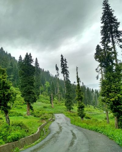 They say Mondays are boring but let me tell you, they can be brutal and memorable ones. Had a lifetime of experience today,got stuck in the woods for almost 10 hours at Tee Pee Bangus Valley Kupwara with no food, water and communication. Photography Kupwara Kashmir Kashmirdiaries Valley Photooftheday Getty Images EyeEm Best Shots Mobilephotography Nature Travel Traveling Travel Destinations Summer Exploratorium Greenery Woods IndianOccupiedKashmir Explore Adventure Trip