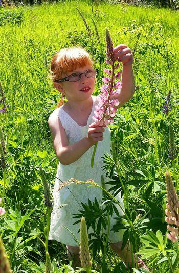 She's a Summergirl  Summer Grandchild Flower Taking Photos Flower Collection EyeEm Gallery