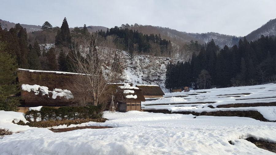Snow coverd in world heritage site, shirakawago