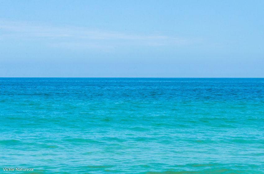 Blue Horizon Over Water Water Turquoise Colored Beauty In Nature Summer Clear Sky Sky Tranquility Paraty Beauty In Nature Vitaonatureza Victornatureza Artefotografia Paz Travel Destinations Brasil Brazil Beach Beauty Fotografiaautoral Green Color