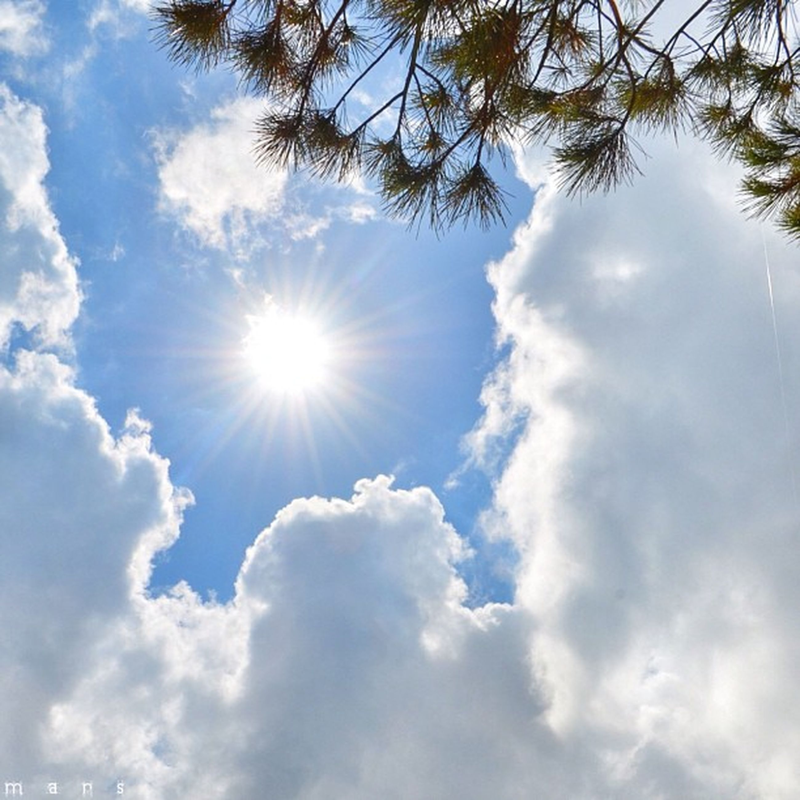 sun, sky, low angle view, sunbeam, sunlight, cloud - sky, beauty in nature, tranquility, lens flare, nature, tranquil scene, scenics, cloud, bright, tree, sunny, cloudy, blue, day, idyllic