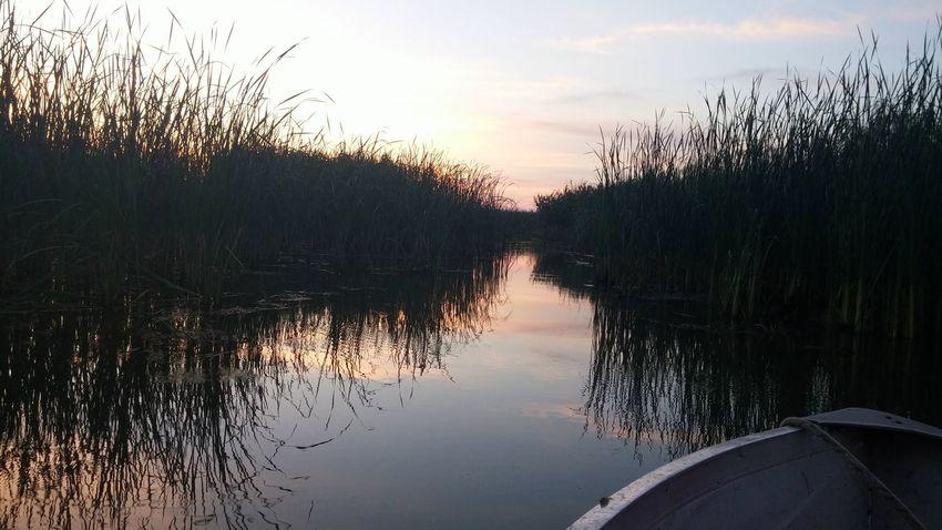 Donaudelta Romania Lake Nature Sunrise Reflection EyeEmNewHere