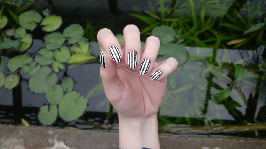 Aestethic Black And White Human Hand Young Women Palm Flower Females Close-up Finger Body Part Manicure Nail Art Painting Fingernails Nail Polish