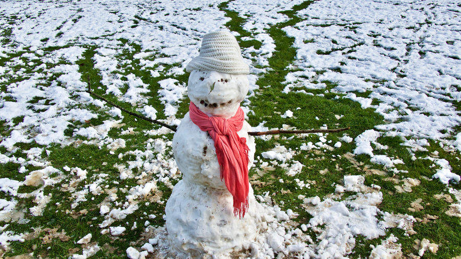 Close-Up Of Snowman At Grassy Field